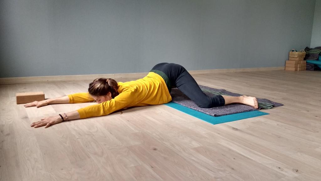 Ari Pallé Yoga Adho Mukha Mandukasana